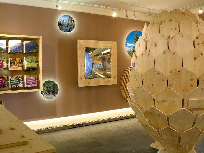 Ausstellung - Erlebnis Zirbe