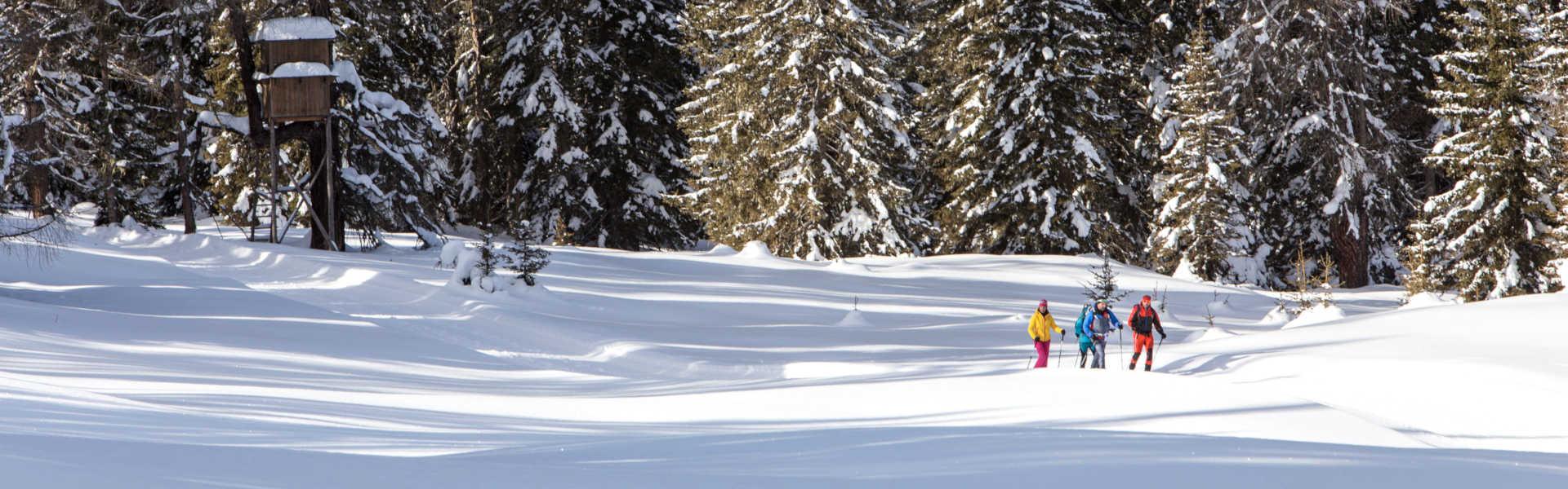 Freizeit - Winter - Schneeschuhwandern - Headerbild