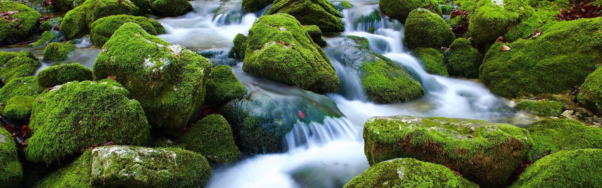 Kulinarik - Alpenquellwasser - Headerbild